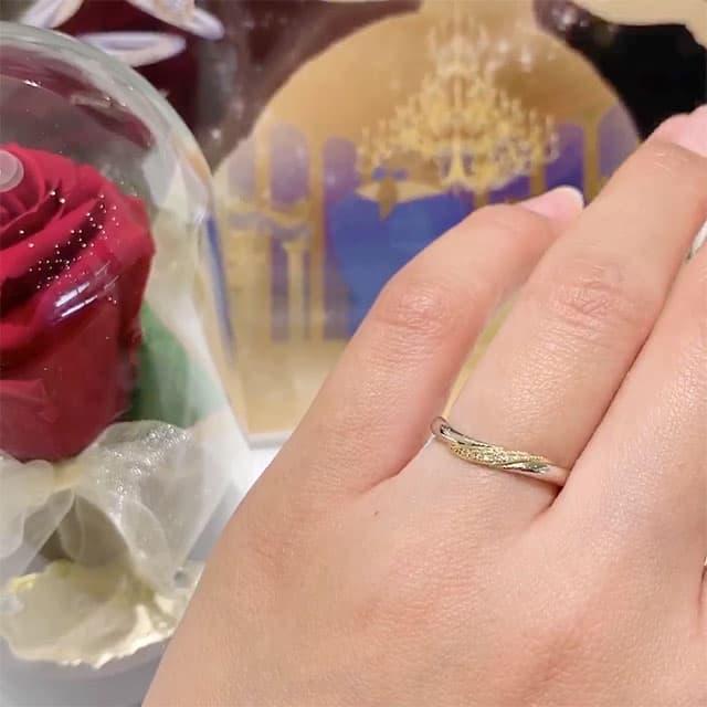 結婚指輪着画 ディズニー「美女と野獣」 エターナル・ローズ